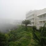 Утренний туман (это не дым!)))